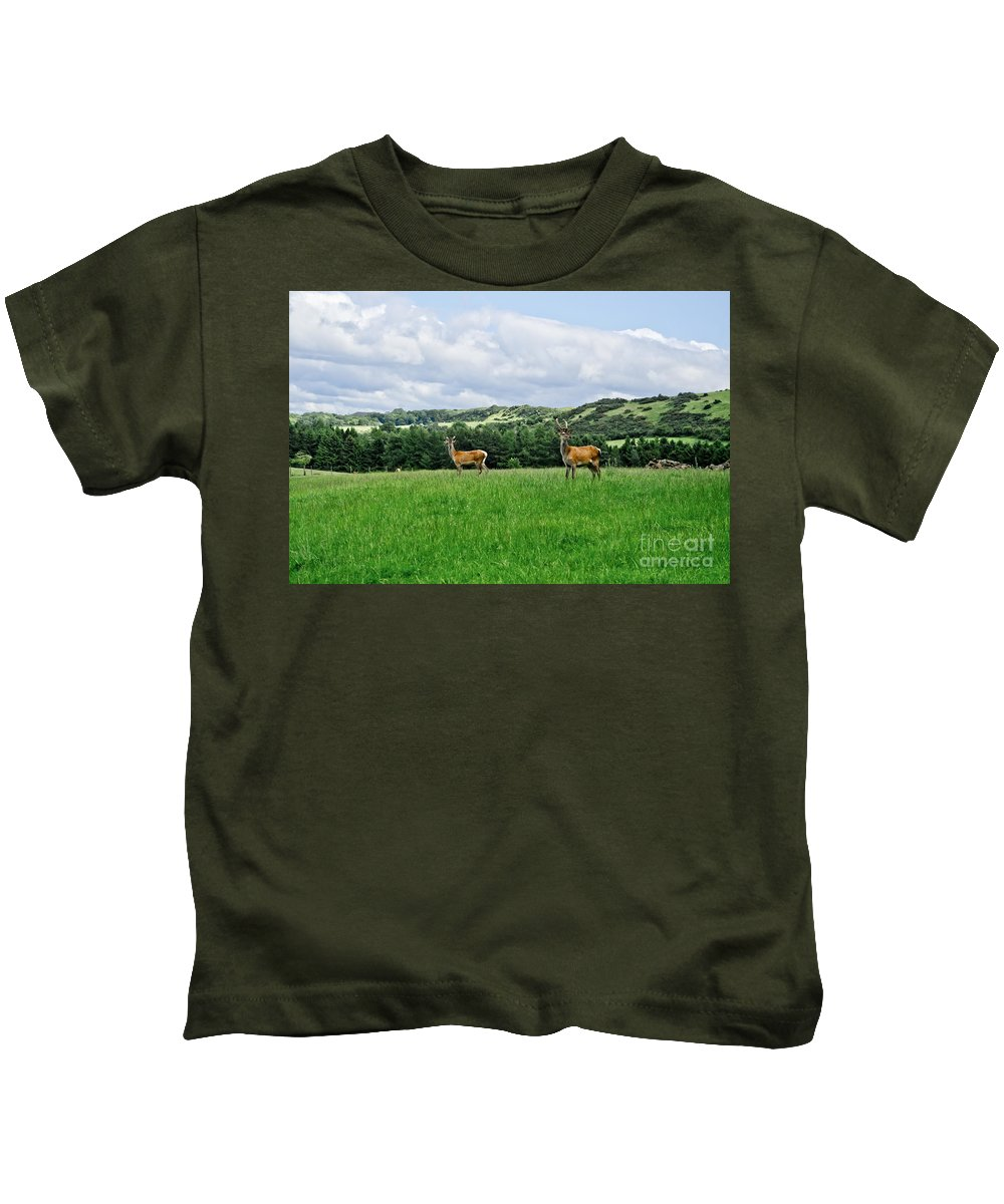 Beecraigs Kids T-Shirt featuring the photograph On The Alert. by Elena Perelman