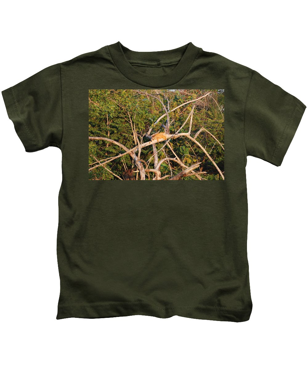 Wood Kids T-Shirt featuring the photograph Orange Iguana by Rob Hans