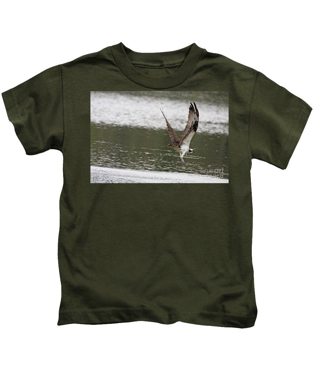 Osprey Kids T-Shirt featuring the photograph Osprey Dive by Deborah Benoit