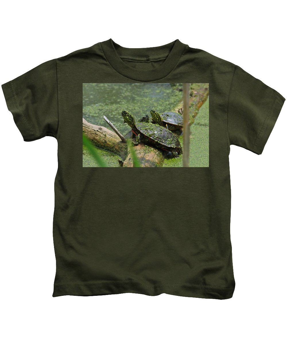 Paint Kids T-Shirt featuring the photograph Painted Turtles by Karon Melillo DeVega