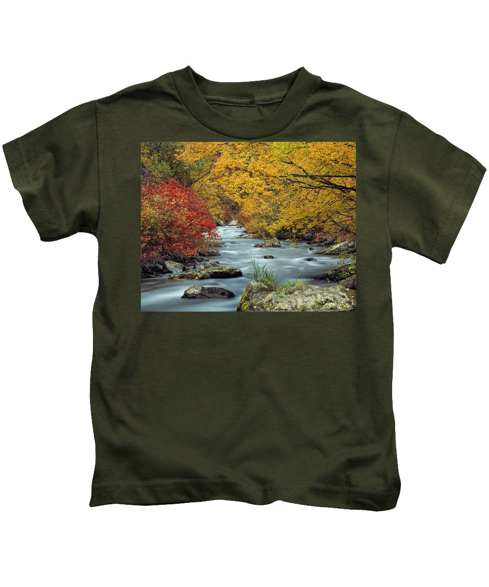 Autumn Kids T-Shirt featuring the photograph Palisades Creek by Leland D Howard
