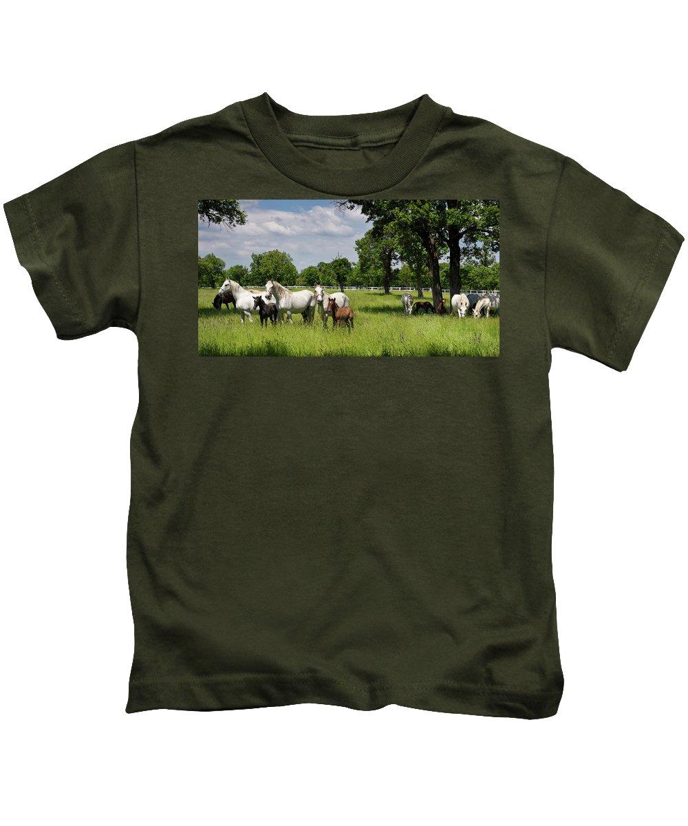 Herd Kids T-Shirt featuring the photograph Panorama Of White Lipizzaner Mare Horses With Dark Foals Grazing by Reimar Gaertner