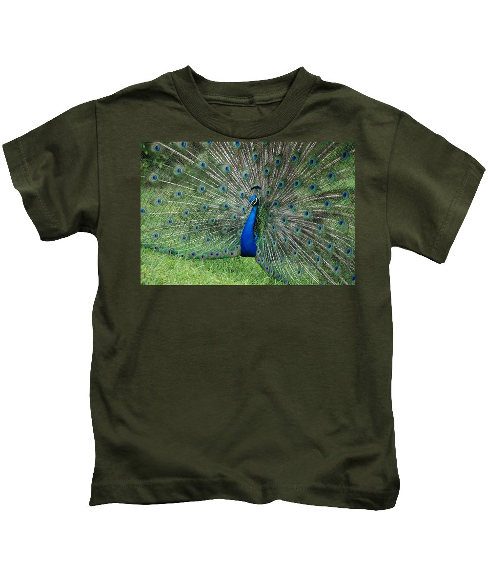 Peacock Kids T-Shirt featuring the photograph Peacocks Glory by Rob Hans