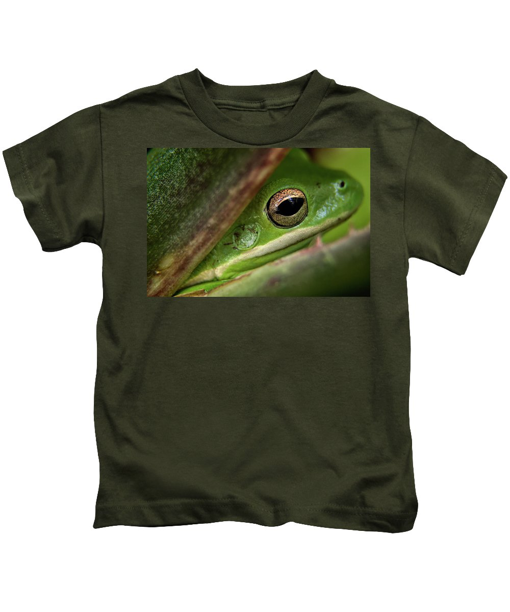 Close Up Of A Perched Frog Kids T-Shirt featuring the photograph Frogy Eye by Denis Lemay