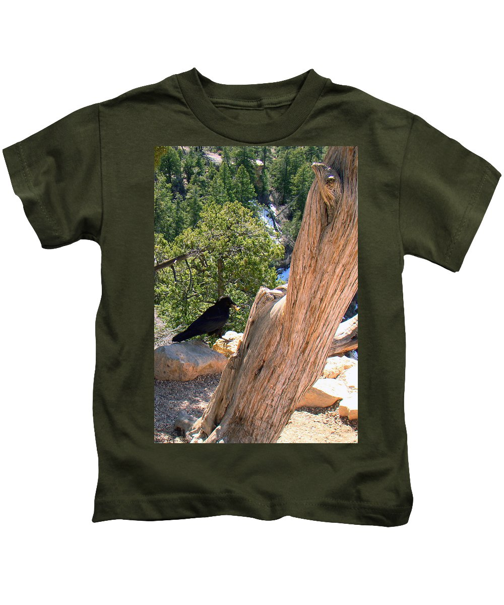 Grand Canyon Kids T-Shirt featuring the photograph Petrified Raven At Grand Canyon by Merja Waters