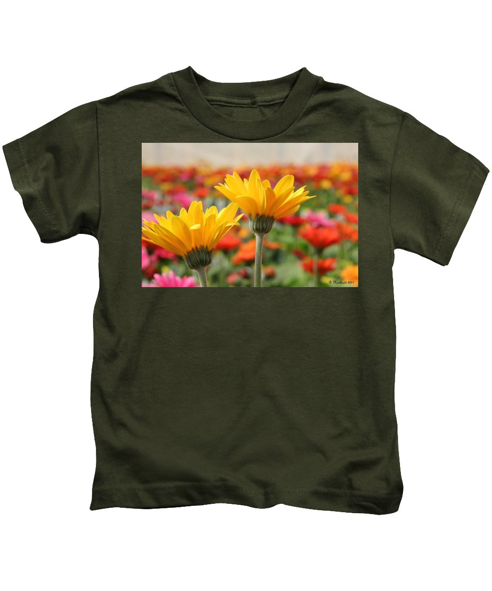 Gerber Kids T-Shirt featuring the photograph Pick Me... No Pick Me by Betty Northcutt
