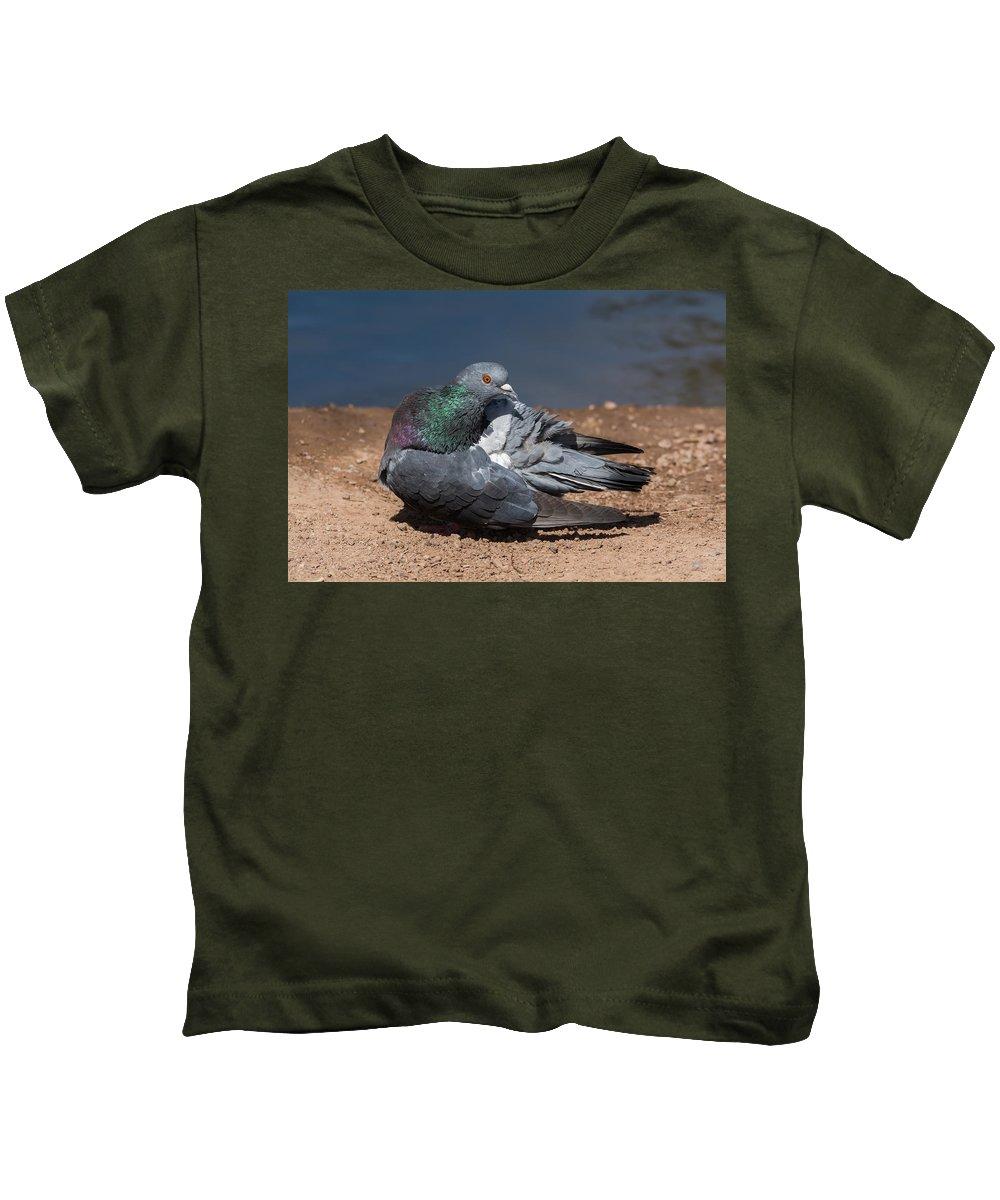 Pidgeon Kids T-Shirt featuring the photograph Pidgeon Preening by Tam Ryan