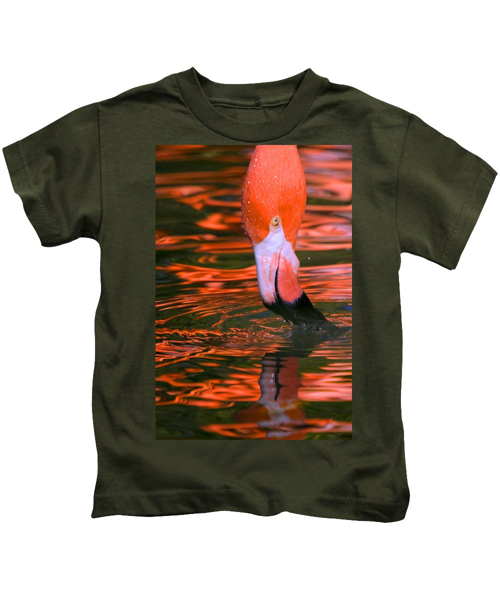 Flamingo Kids T-Shirt featuring the photograph Pink Flamingo by Randall Ingalls