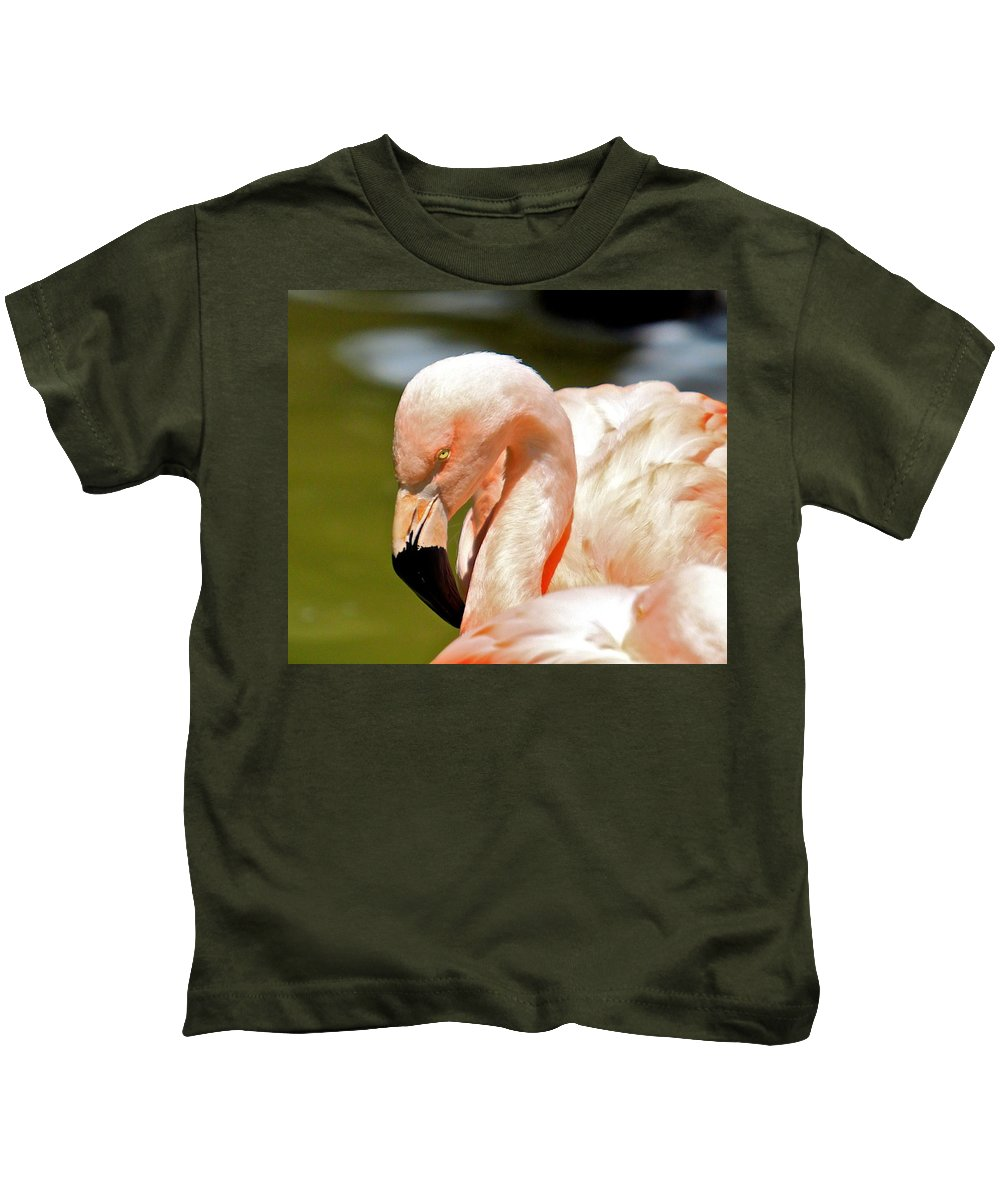 Tags: Kids T-Shirt featuring the photograph Pink Flamingo by Robert Pearson