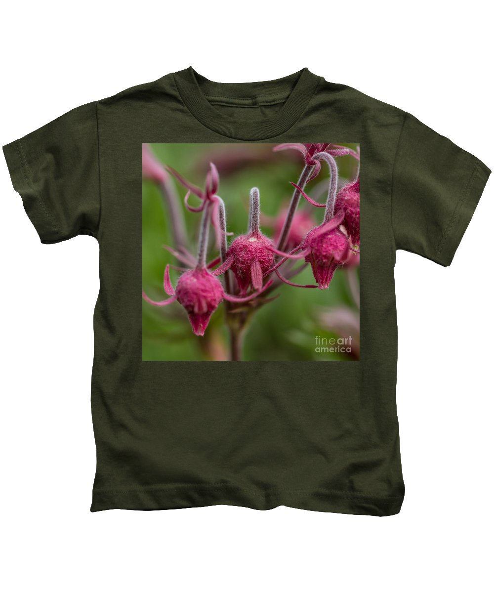 Colorado Kids T-Shirt featuring the photograph Pink Fuzz 3 - Square by Ashley M Conger