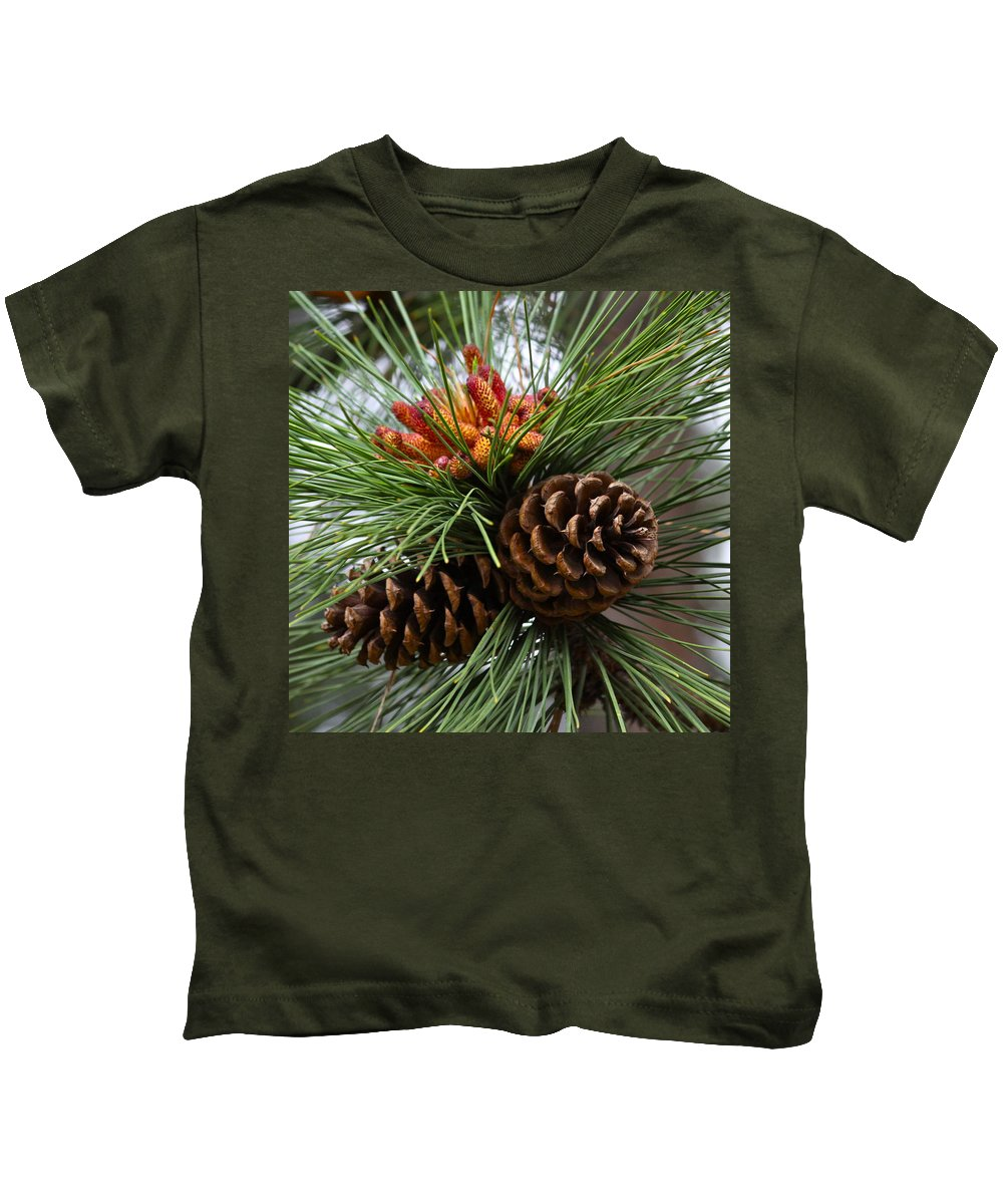 Tree Kids T-Shirt featuring the photograph Ponderosa Pine Cones by Karon Melillo DeVega
