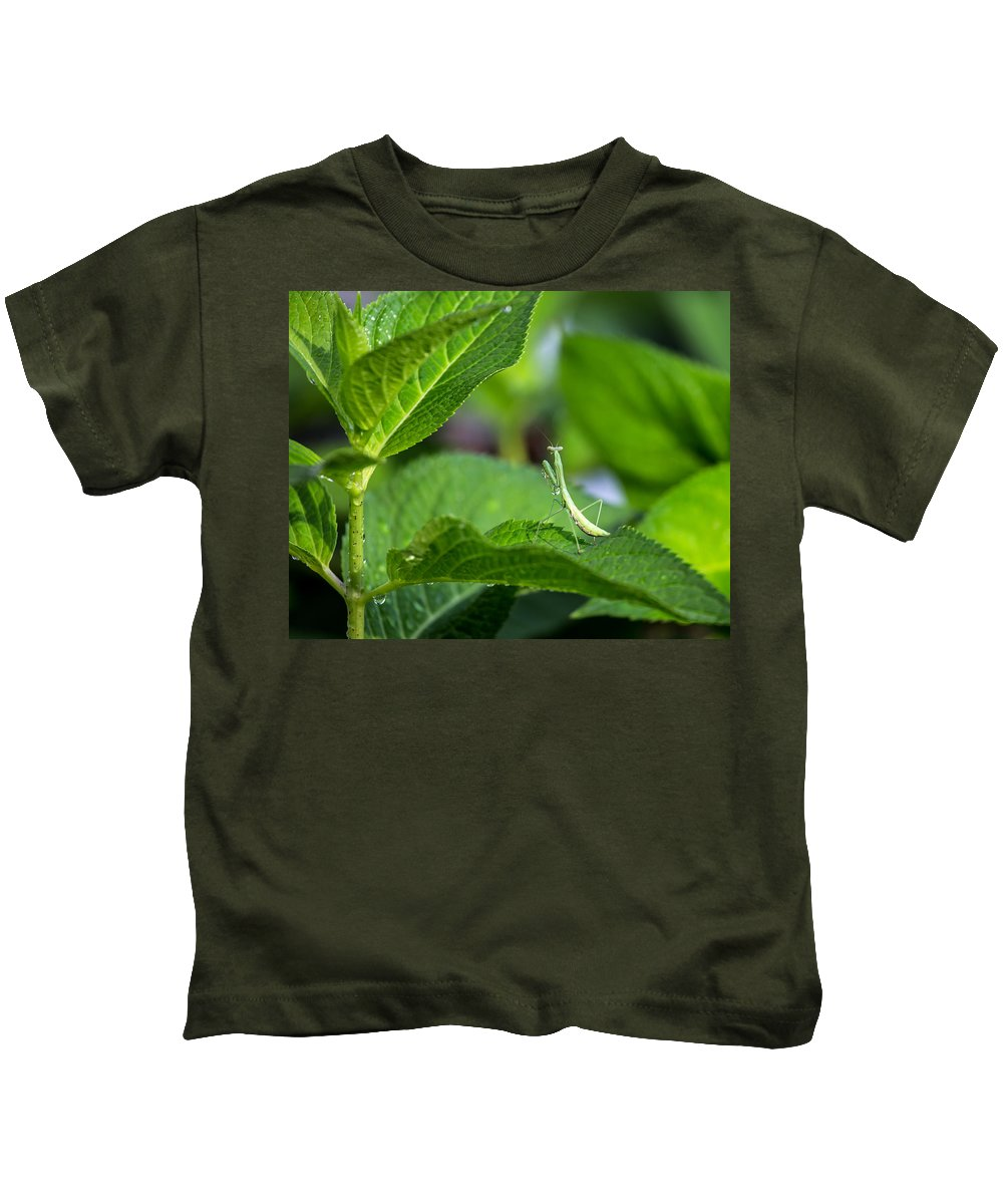 Praying Kids T-Shirt featuring the photograph Praying Mantis-2 by Charles Hite
