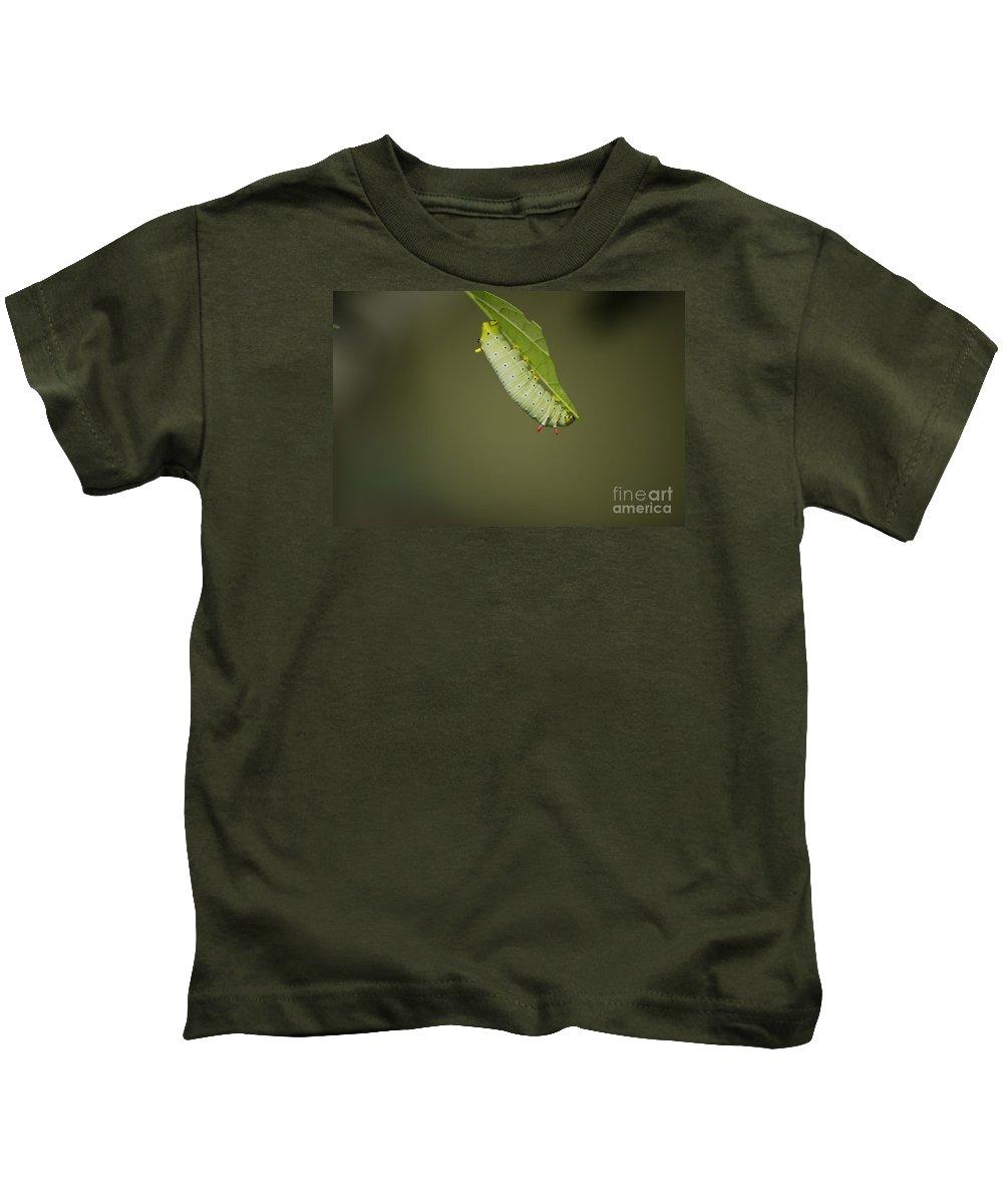 Promethea Kids T-Shirt featuring the photograph Promethea by Randy Bodkins