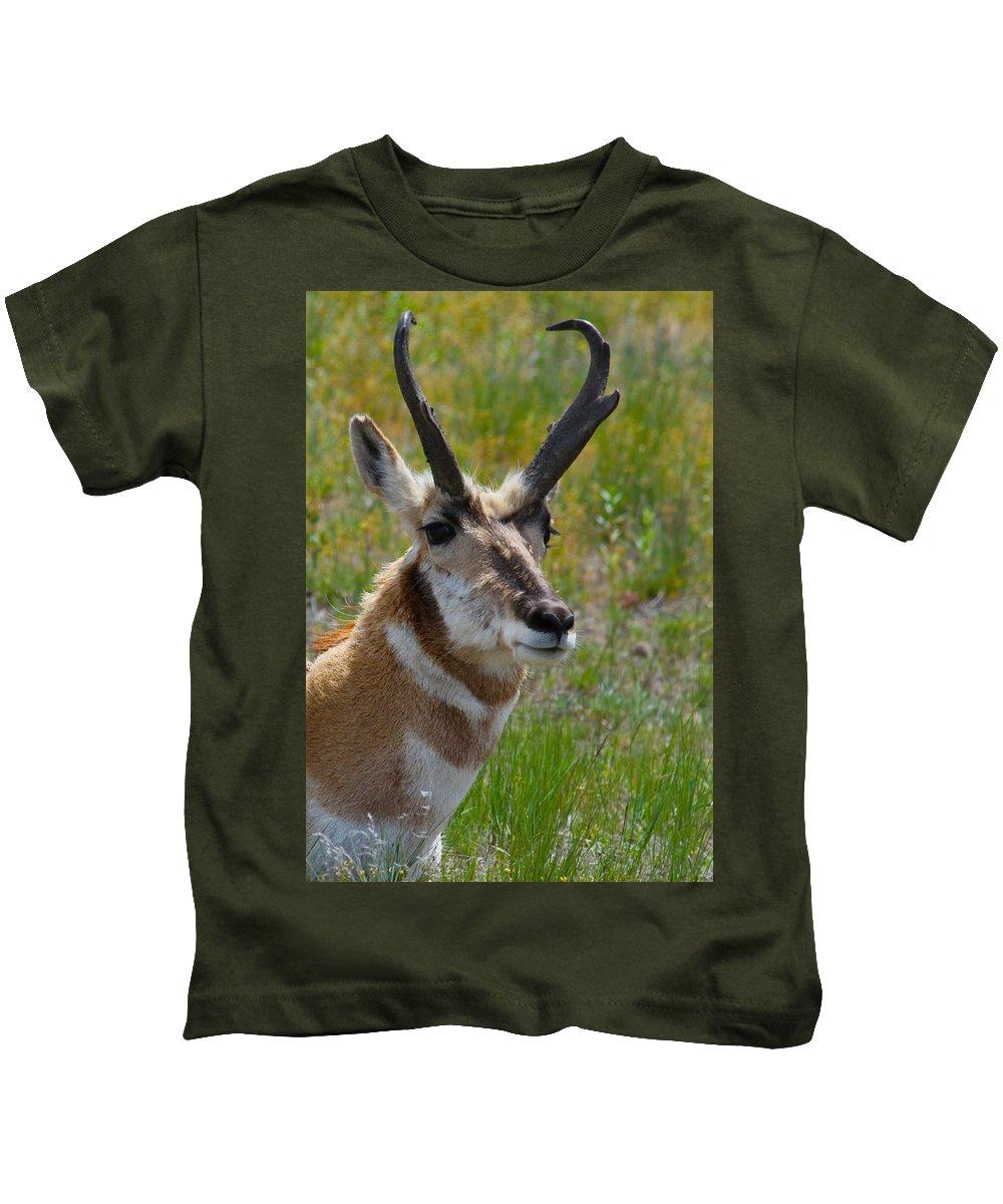 Pronghorn Kids T-Shirt featuring the photograph Pronghorn Buck by Karon Melillo DeVega