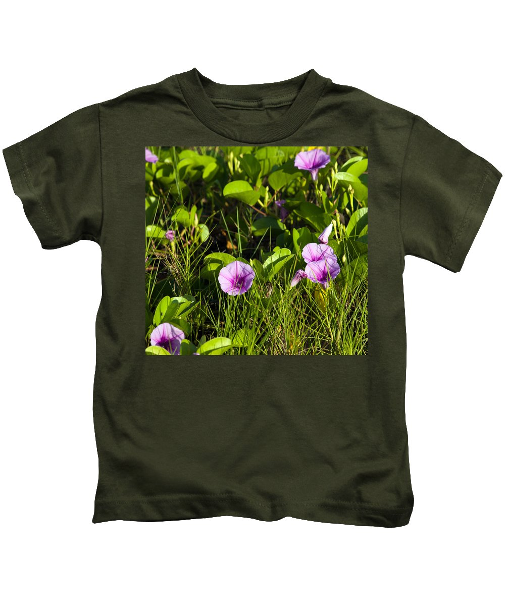 Railroad; Vine; Morning; Glory; Ipomoea; Pes-caprae; Pes; Caprae; Flower; Florida; Shore; Beach; Bea Kids T-Shirt featuring the photograph Railroad Vine by Allan Hughes