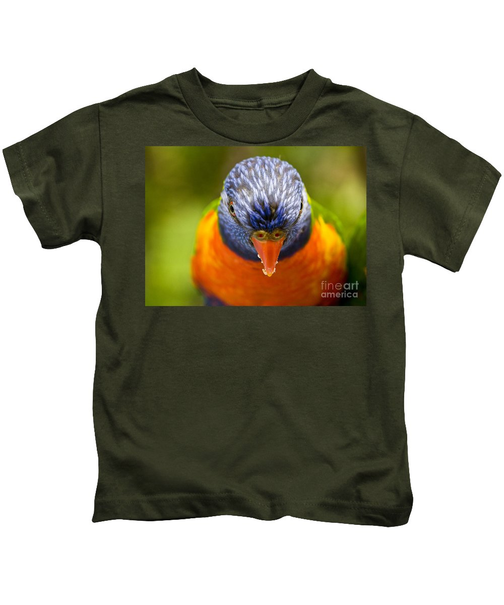 Rainbow Lorikeet Kids T-Shirt featuring the photograph Rainbow Lorikeet by Sheila Smart Fine Art Photography