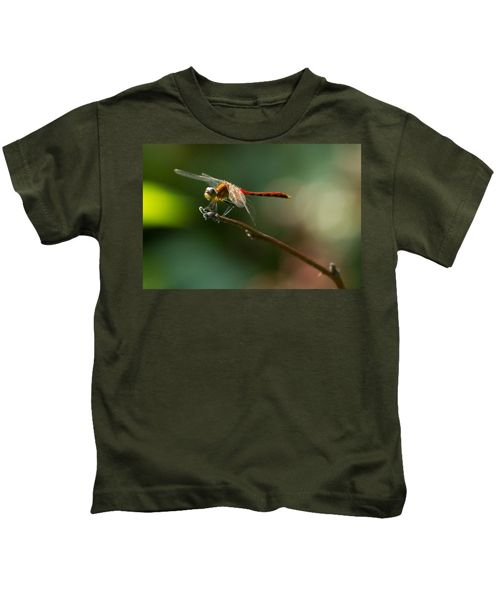 Insects Kids T-Shirt featuring the photograph Ready For Flight by Frank Pietlock