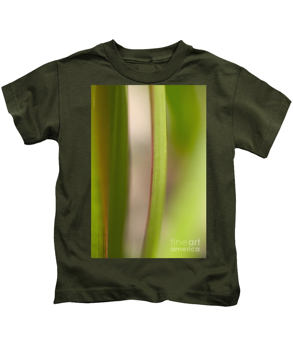 Blur Kids T-Shirt featuring the photograph Red And Green Leaves by Tomas del Amo - Printscapes