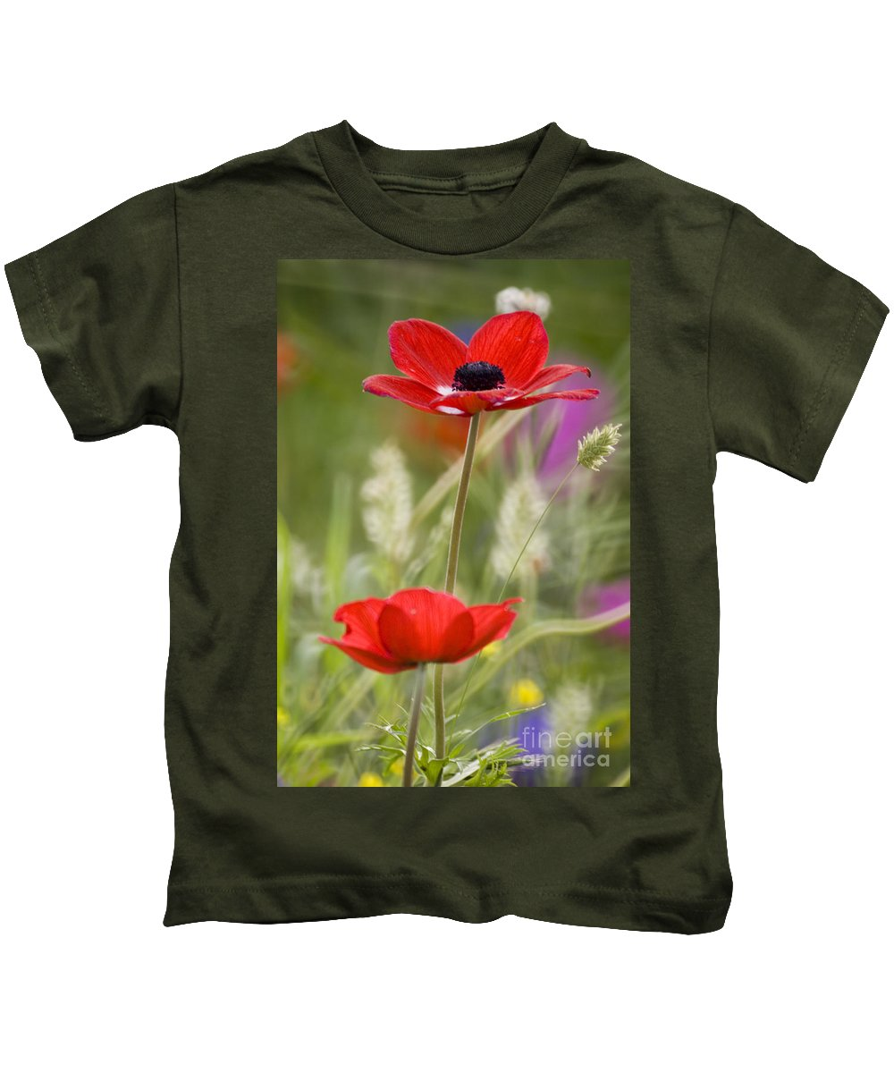 Red Kids T-Shirt featuring the photograph Red Anemone Coronaria In Nature by Ofer Zilberstein