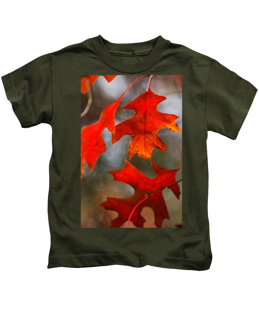 Fall Kids T-Shirt featuring the photograph Red Autumn Leaves by Jill Reger
