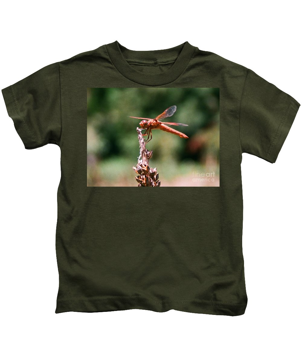 Dragonfly Kids T-Shirt featuring the photograph Red Dragonfly II by Dean Triolo