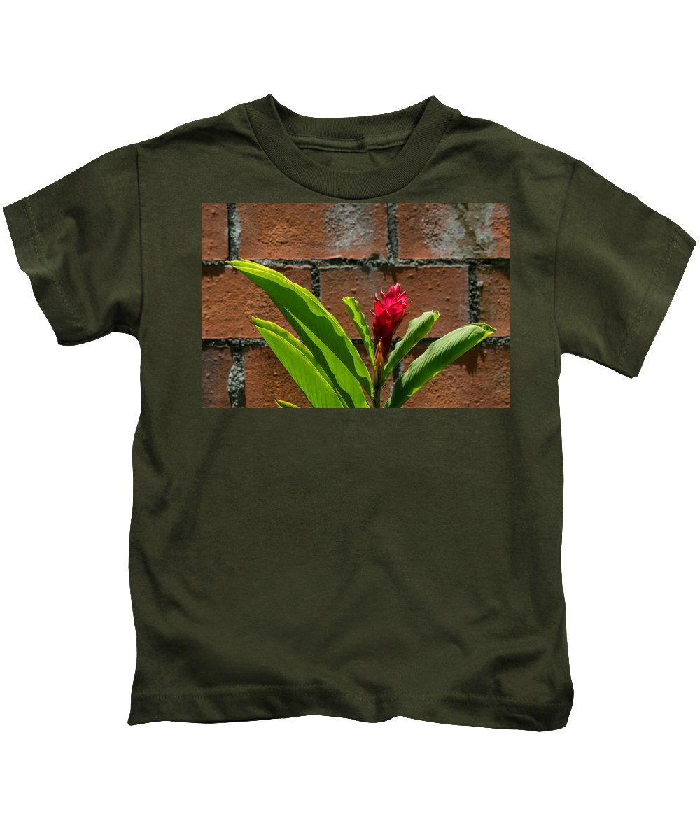 Red Flower Kids T-Shirt featuring the photograph Red Flower Iv by Totto Ponce