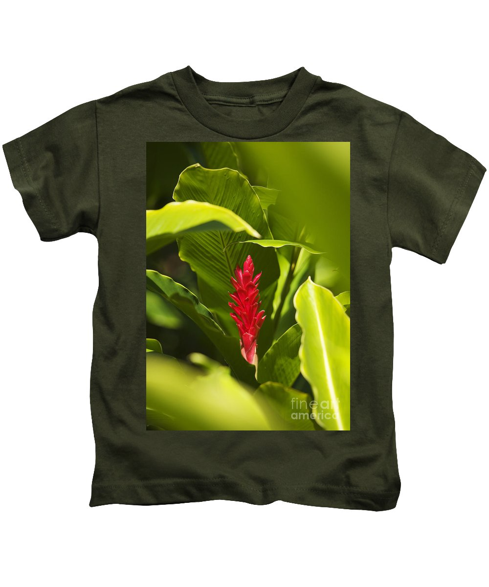 Beautiful Kids T-Shirt featuring the photograph Red Ginger Flower by Ron Dahlquist - Printscapes