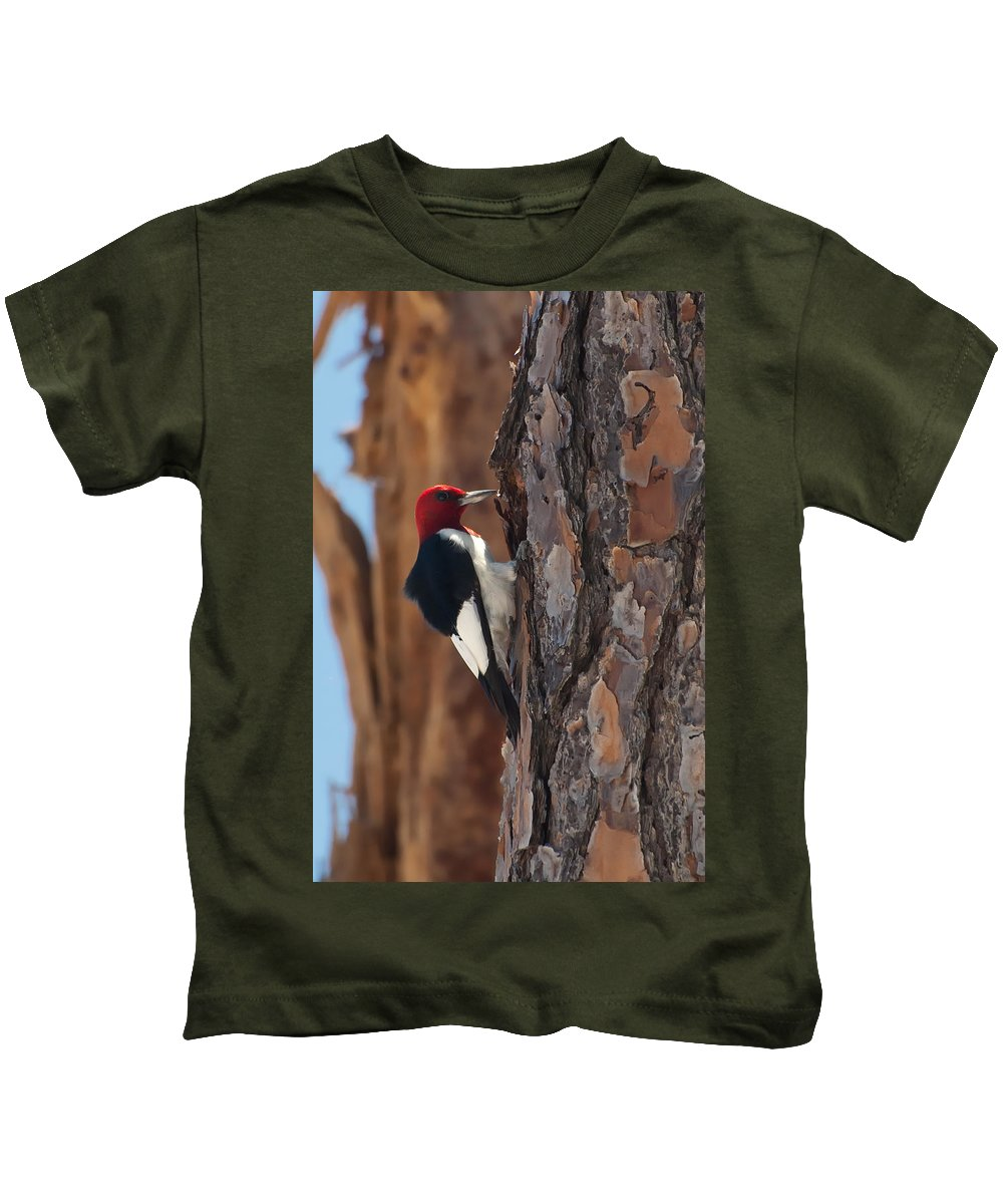 Animal Kids T-Shirt featuring the photograph Red Headed Woodpecker by Rich Leighton