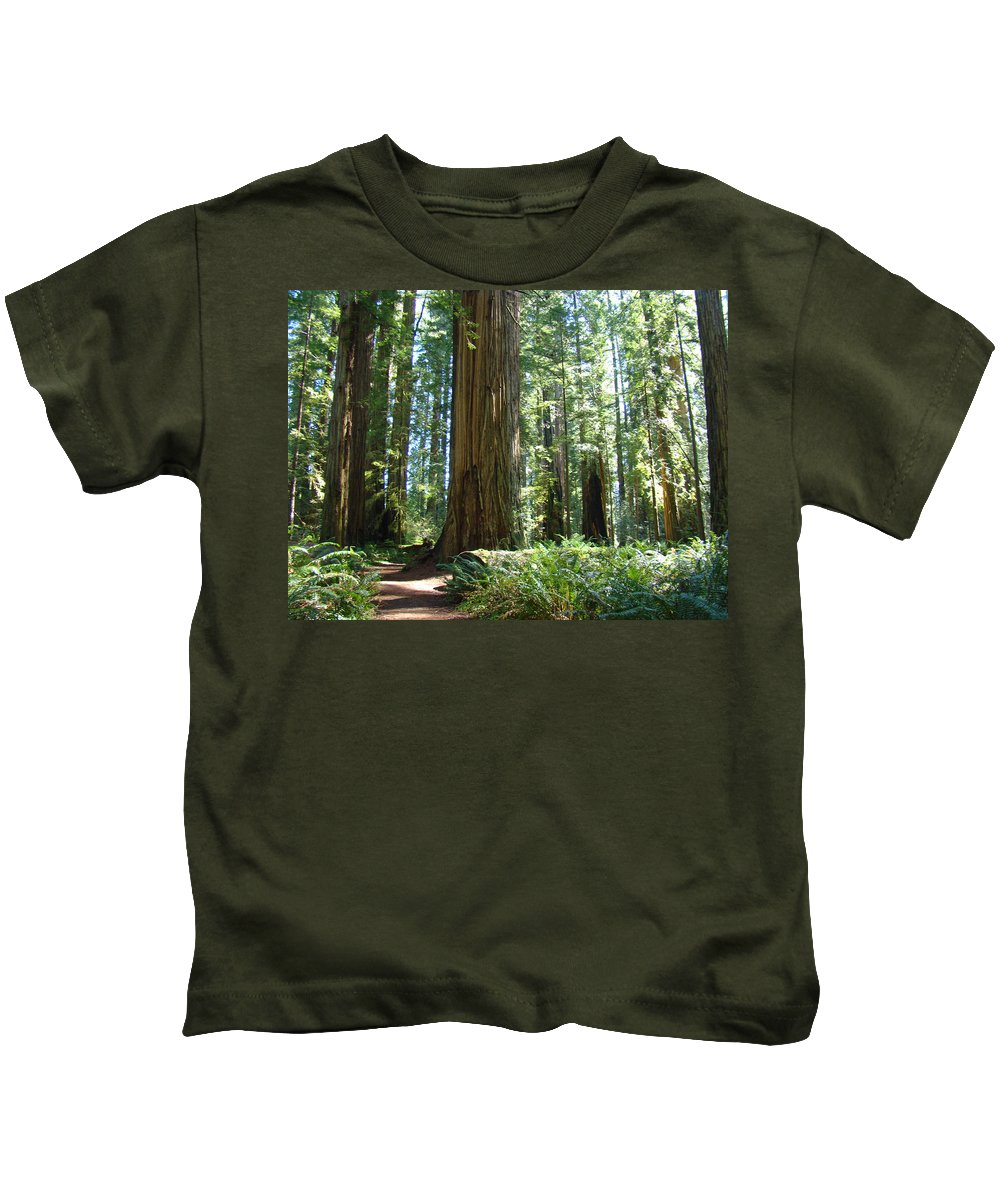 Redwood Kids T-Shirt featuring the photograph Redwood Trees Forest California Redwoods Baslee by Baslee Troutman
