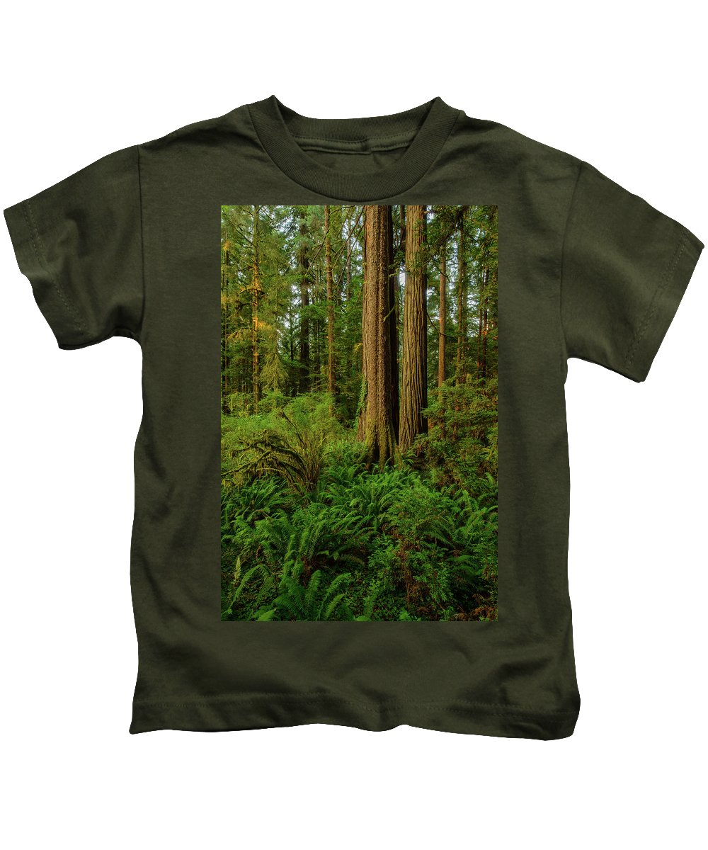 Charlie Choc Kids T-Shirt featuring the photograph Redwoods And Ferns by Charlie Choc