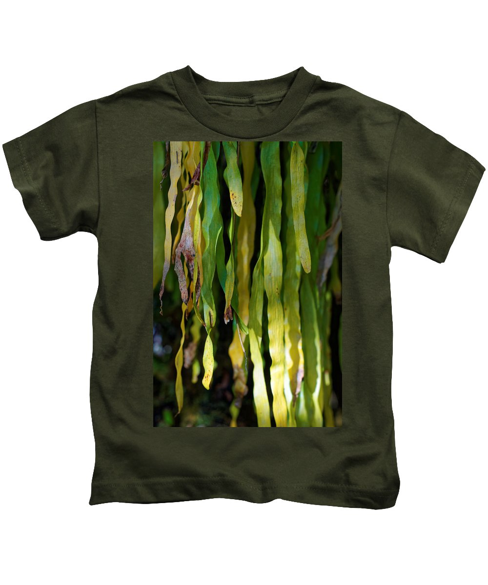 Kids T-Shirt featuring the photograph Ribbons Of Green by Wayne Wilkinson
