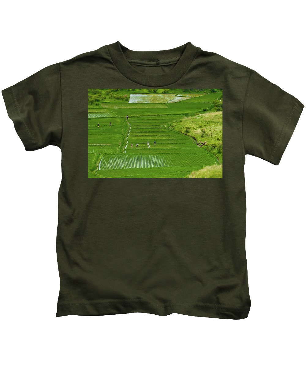 Madagascar Kids T-Shirt featuring the photograph Rice Fields by Michael Jacobs