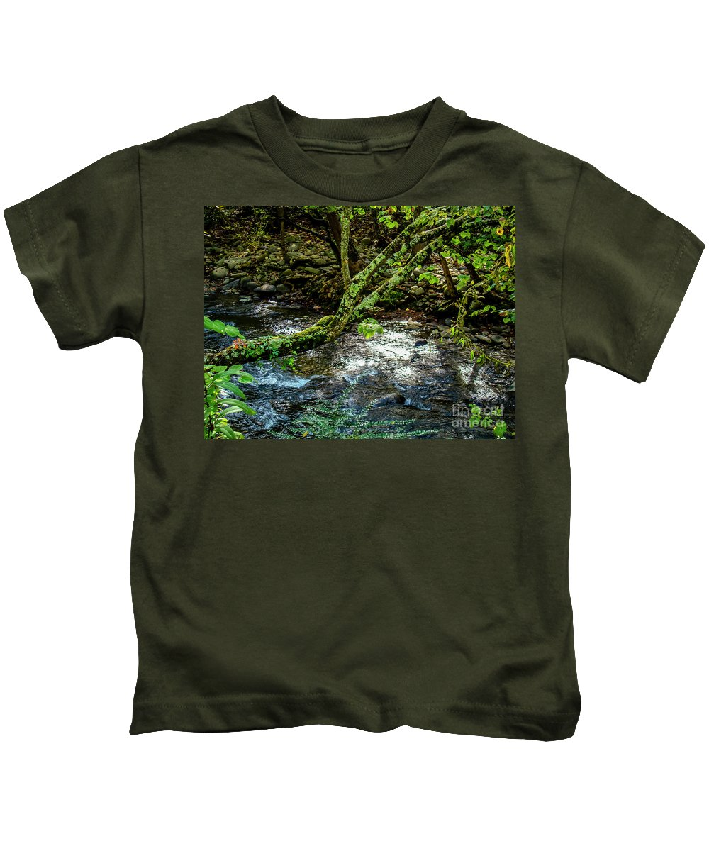 Gatlinburg Kids T-Shirt featuring the photograph Roaring Fork 1 by Nancy L Marshall