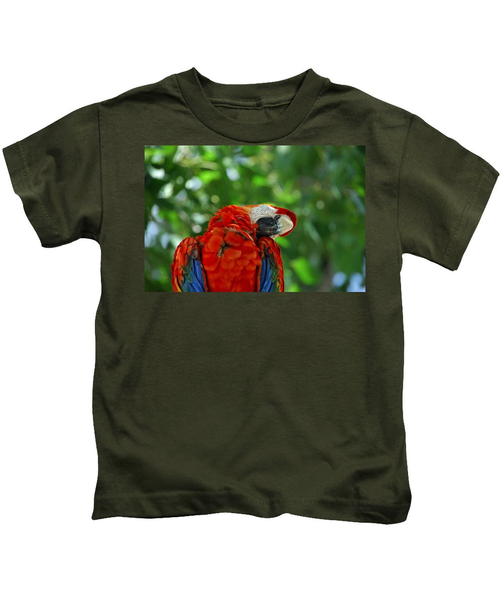 Parrot Kids T-Shirt featuring the photograph Rock A Bye Birdie by Donna Blackhall