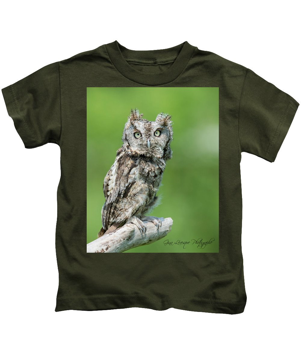 Scops Owl Art For Sale Promotion For Sale Captive Canadian Geographic National Geographis Kids T-Shirt featuring the photograph Scops Owl by Gina Levesque