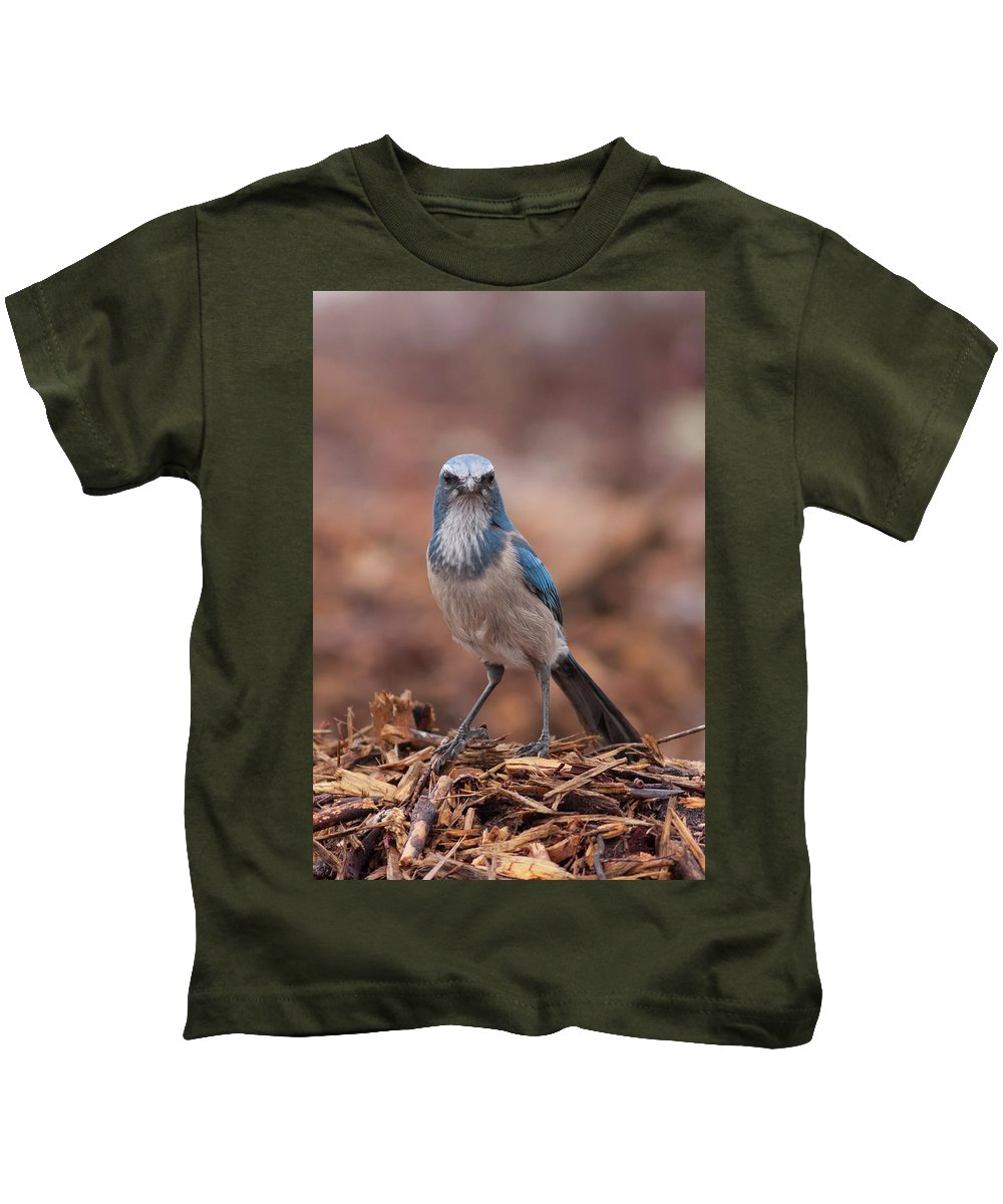 Scrub Jay Kids T-Shirt featuring the photograph Scrub Jay On Chop by Paul Rebmann