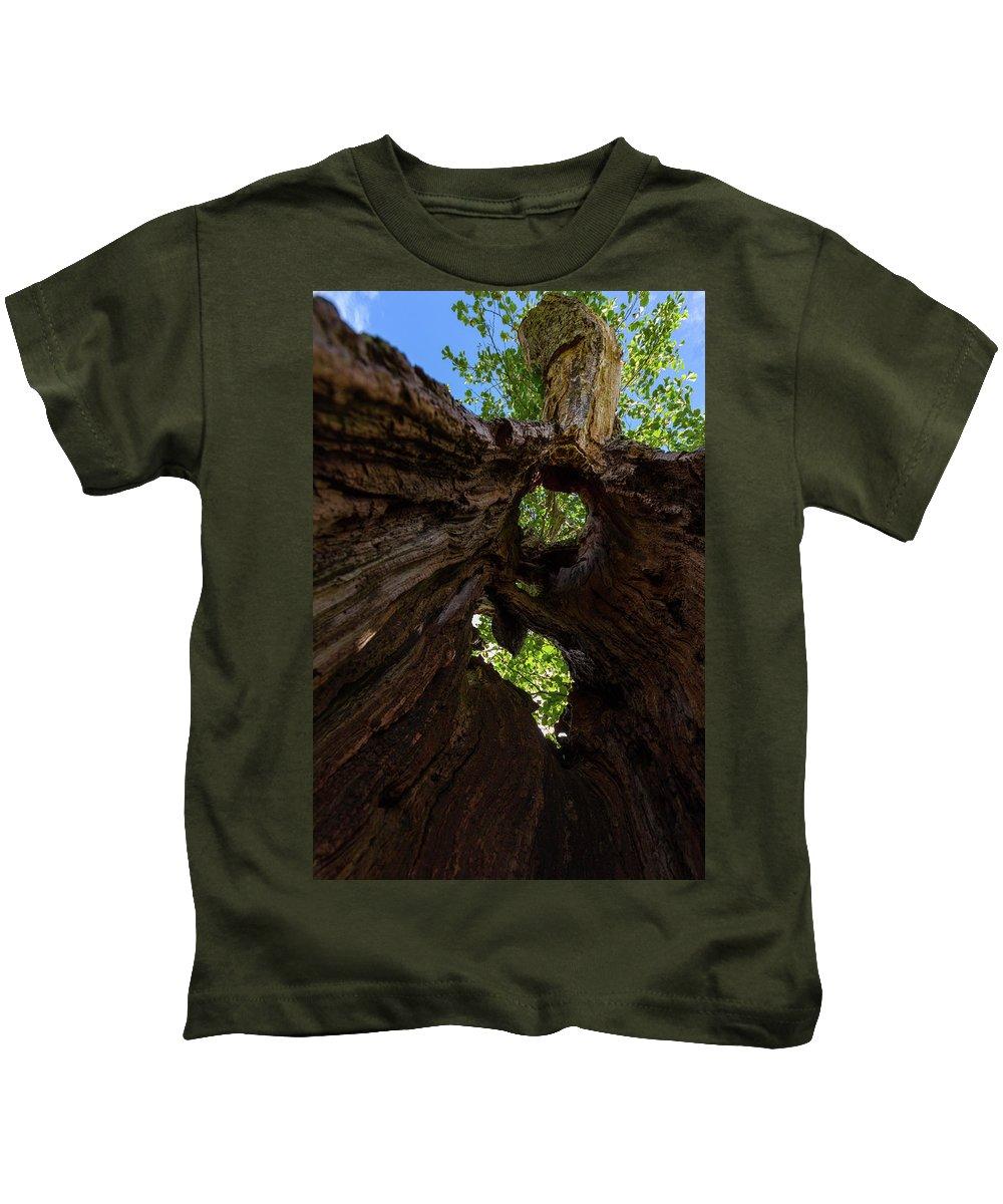 Cumbria Lake District Kids T-Shirt featuring the photograph Sky View Through A Hollow Tree Trunk by Iordanis Pallikaras