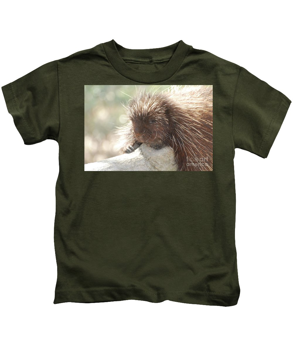 Porcupine Kids T-Shirt featuring the photograph Sleeping Porcupine On A Fallen Branch by DejaVu Designs