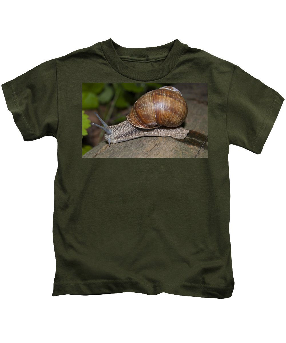 Snail Kids T-Shirt featuring the photograph Snail On A Log by Sergei Dolgov