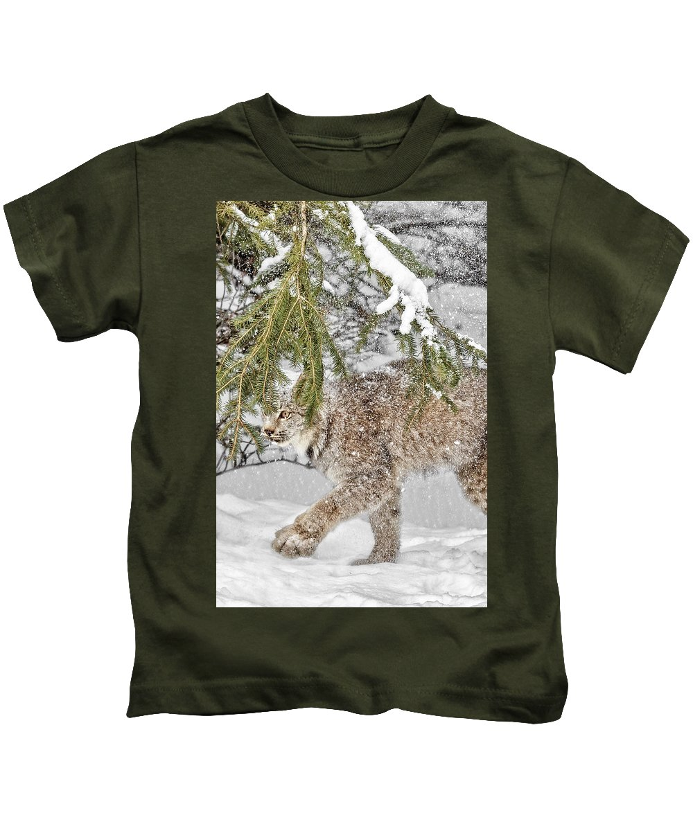 Snow Fall Kids T-Shirt featuring the photograph Snow Fall by Wes and Dotty Weber