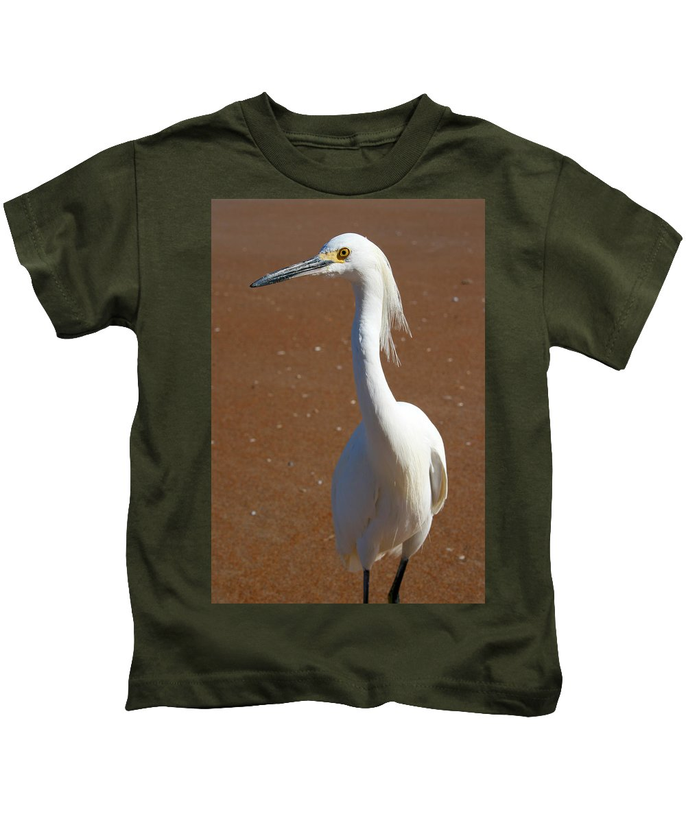 Bird Beach Sand White Bright Yellow Curious Egret Long Neck Feather Eye Ocean Kids T-Shirt featuring the photograph Snowy Egret by Andrei Shliakhau