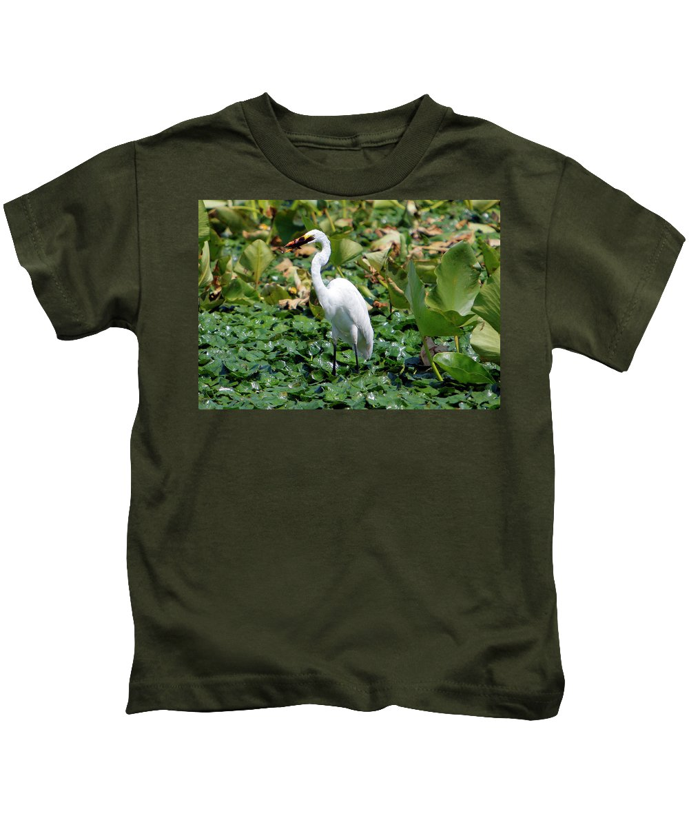 Wild Kids T-Shirt featuring the photograph Snowy Egret by Victor Alcorn