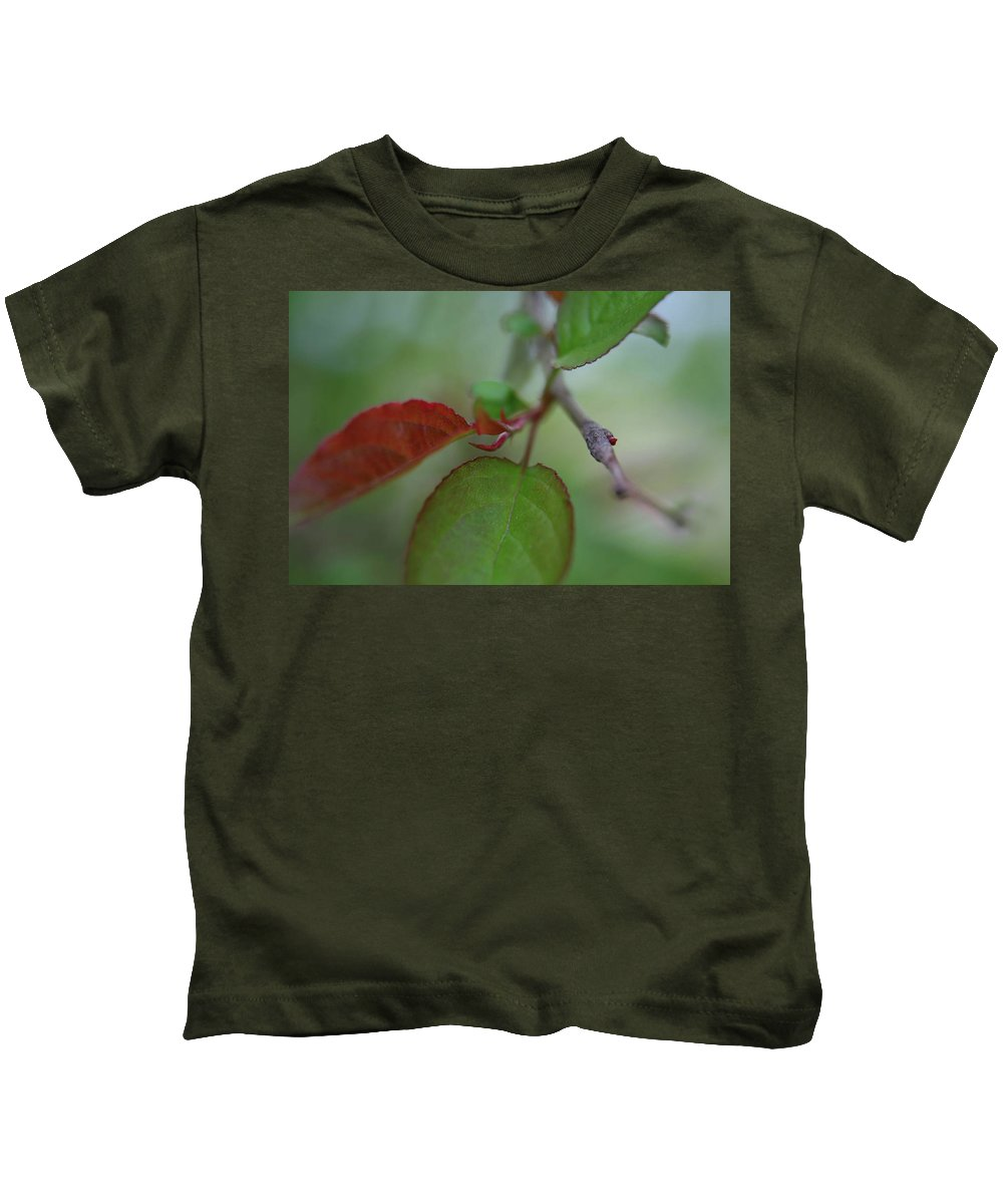 Branch Kids T-Shirt featuring the photograph Soft Branch by Karol Livote
