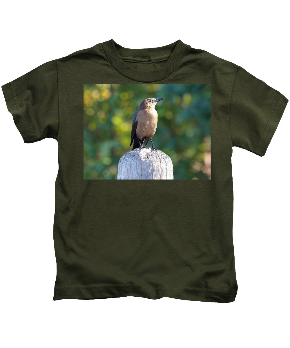 Quiscalus Mexicanus Kids T-Shirt featuring the photograph Sparkles by Kala King