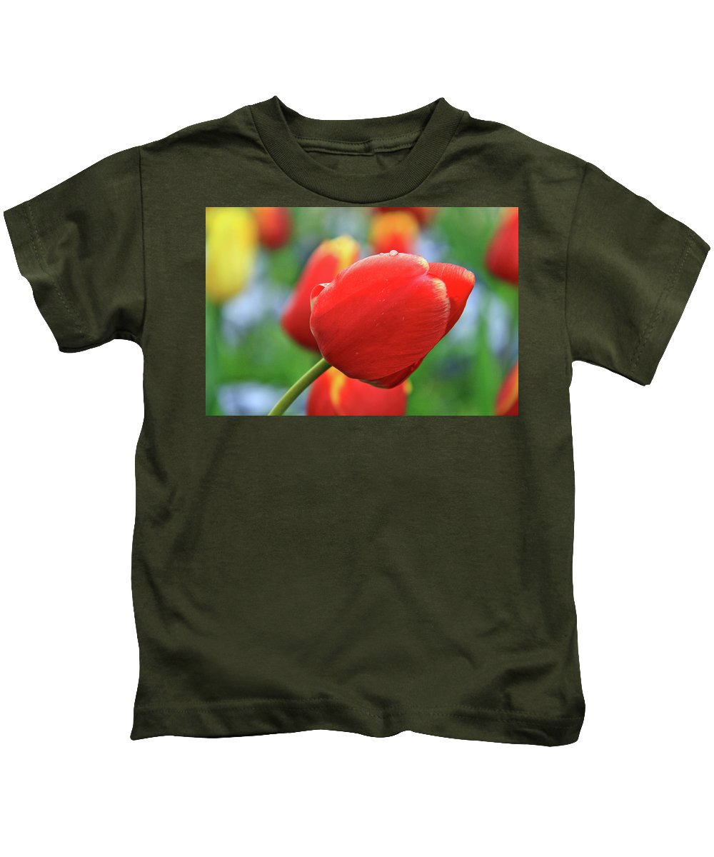 Flowers Kids T-Shirt featuring the photograph Spring Again by Scott Mahon