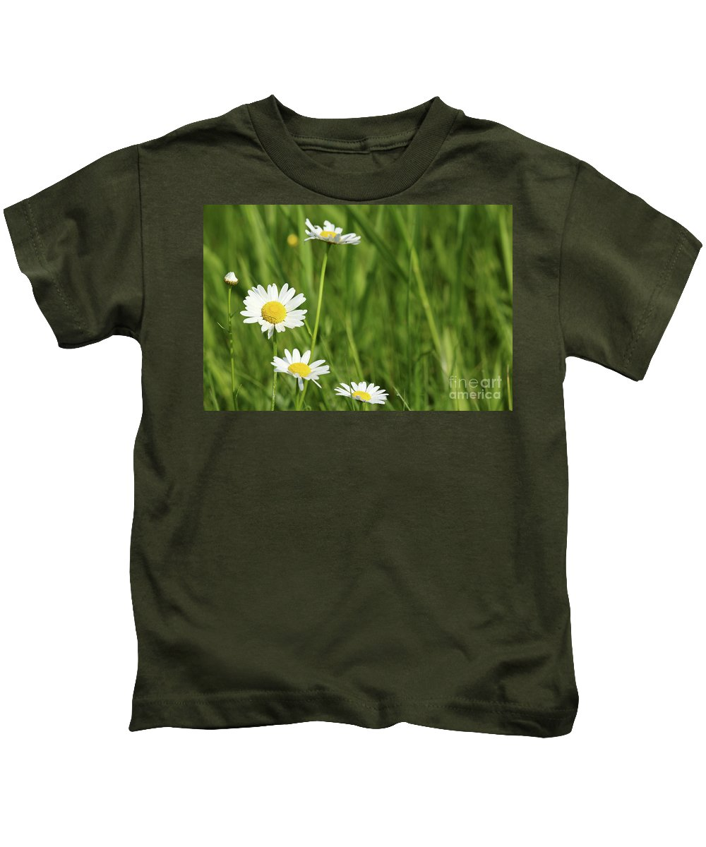 Camomile Kids T-Shirt featuring the photograph Spring Scene White Wild Flowers by Goce Risteski