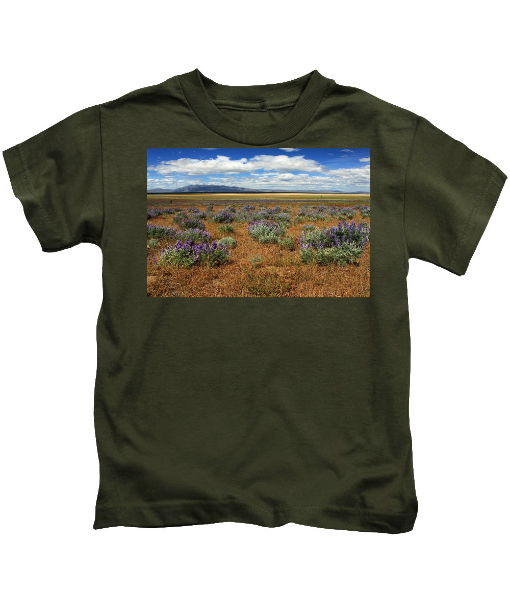 Landscape Kids T-Shirt featuring the photograph Springtime In Honey Lake Valley by James Eddy