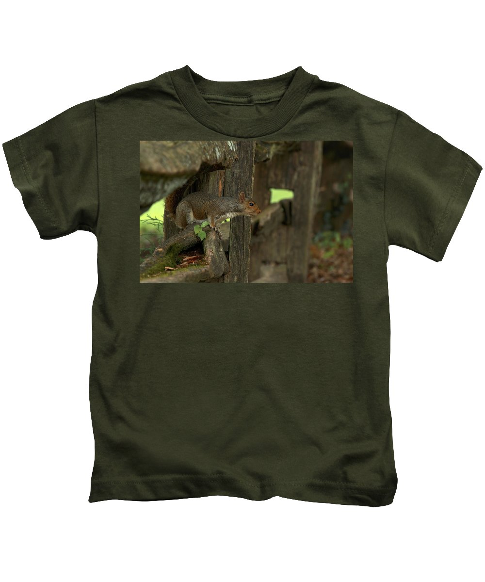 Animal Kids T-Shirt featuring the photograph Squatting Squirrel by Travis Rogers