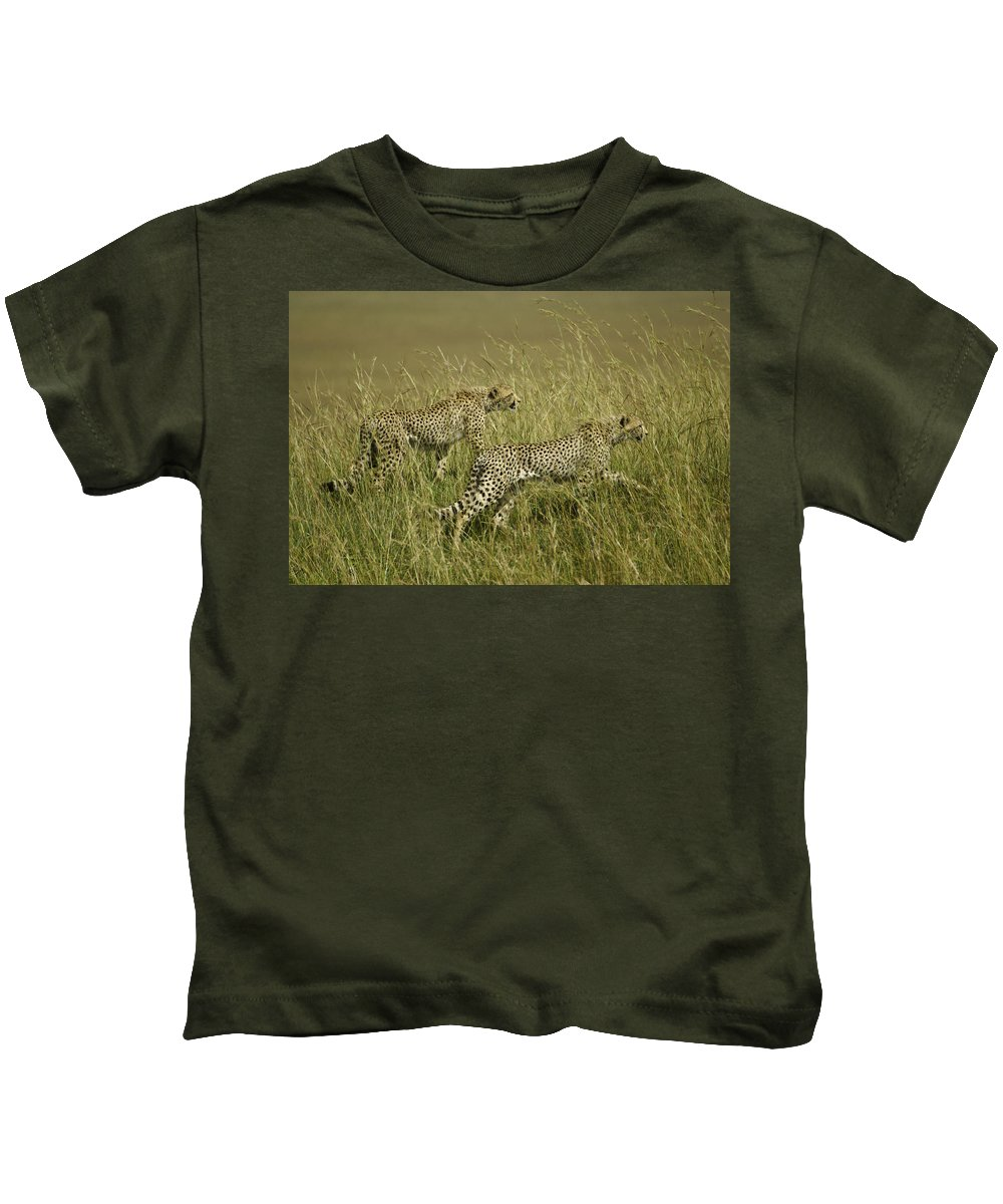 Africa Kids T-Shirt featuring the photograph Stalking Cheetahs by Michele Burgess