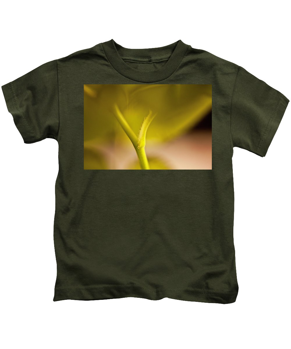 Rose Kids T-Shirt featuring the photograph Stem Of A Rose by Danielle Silveira
